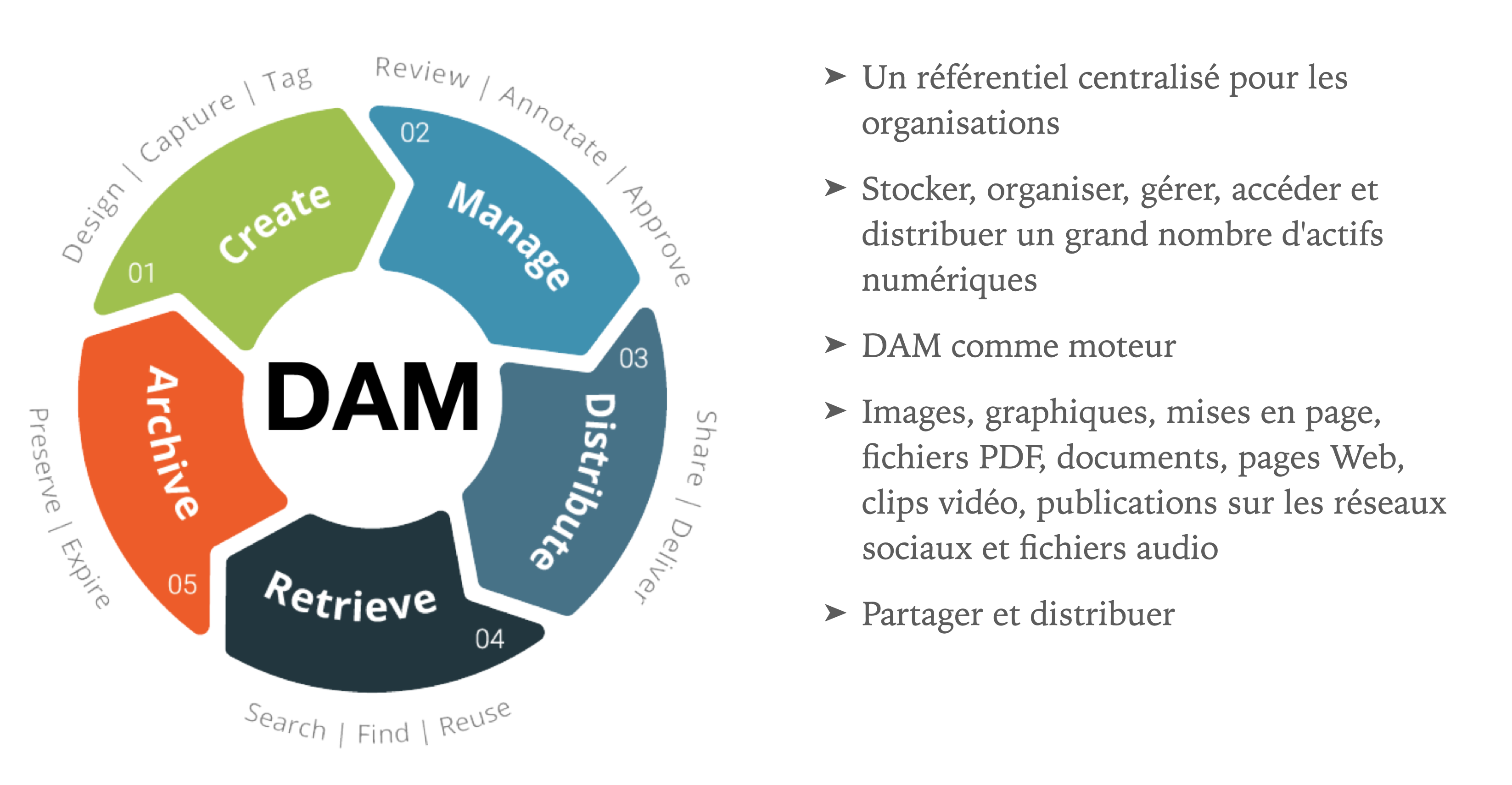 What_is_DAM_FR